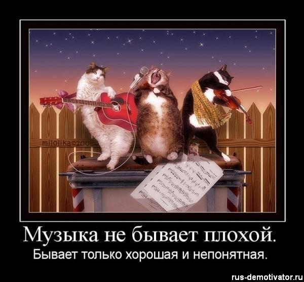 http://cs11433.userapi.com/u41307074/101053298/x_d819eb03.jpg