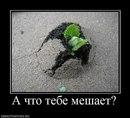 Александр Волков фото #17