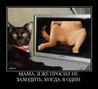 Александр Фатеев, 18 марта 1983, Москва, id119109517
