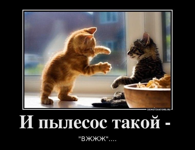 Открытие банк офис в москве фото будильника заставил