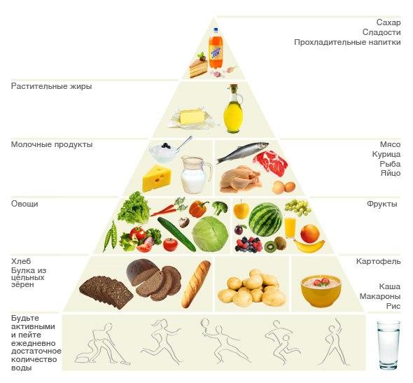 какие продукты надо есть чтобы похудеть