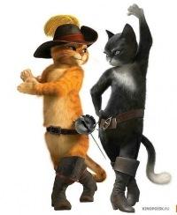Кот в сапогах фото из мультика