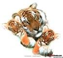 """Тигрица с тигрятами, животные, дикие, звери, хищник, тигр, тигрица, тигрёнок.  Предпросмотр схемы вышивки  """"Тигрица с..."""
