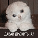 Ритуська Салманова, 26 февраля , Жлобин, id133866301