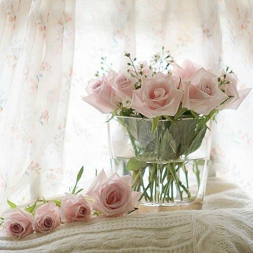 http://cs11456.vkontakte.ru/u139785201/143638002/x_75ebc061.jpg