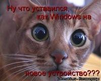 Winston888 Петрович, id121772190