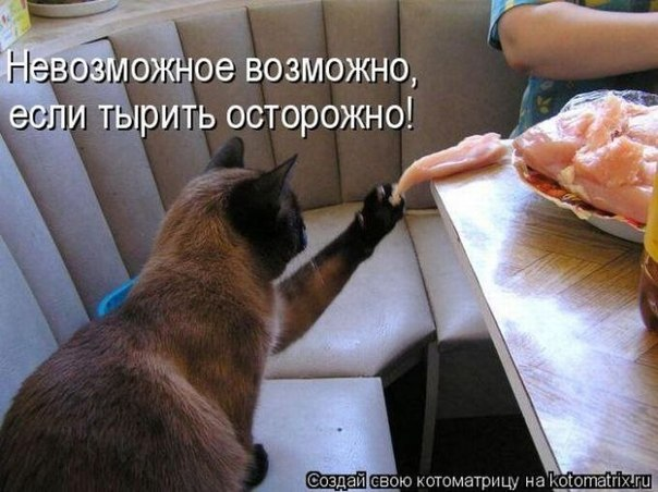 http://cs11471.userapi.com/u154427453/-14/x_8c095a26.jpg