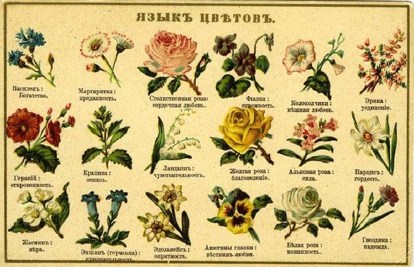 Картинки из символов про любовь ...: pictures11.ru/kartinki-iz-simvolov-pro-lyubov.html