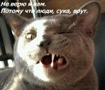 Ирина Ирина, 11 июня 1998, Кемерово, id106208545