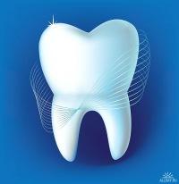 Весёлые и довольные векторные зубы.  Симпотичные зубы с глазками и зубными щётками.  Хорошо подойдут для оформления...