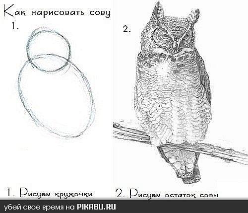 http://cs11478.vkontakte.ru/u40207738/125084207/x_3197aa59.jpg