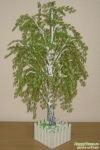 ...можете познакомиться с эксклюзивными бисерными творениями ручной работы - сувенирными деревьями и цветами и бисера.