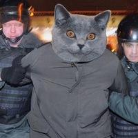 Иван Данилов, 13 мая , Москва, id1238440