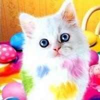 Мирослава Пятибратова  ☺ ☺ ☺