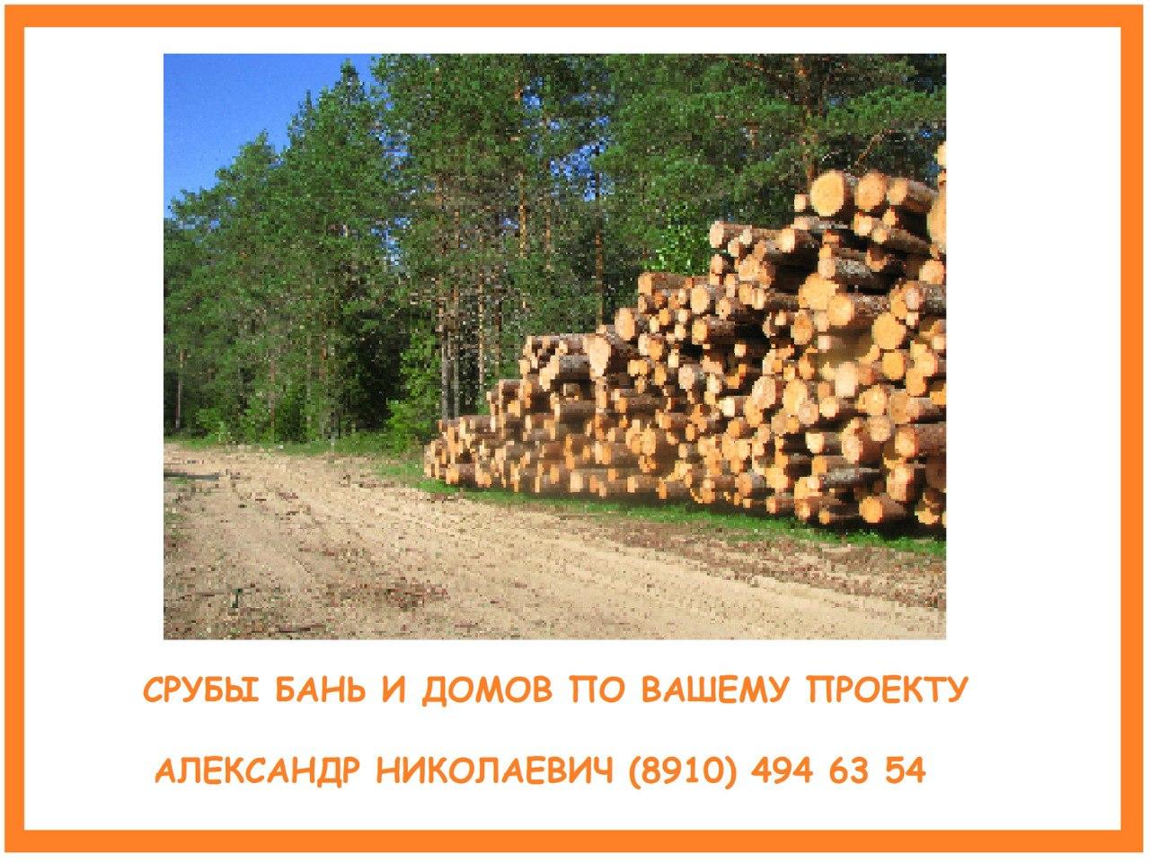 Александр Николаевич - фото №20