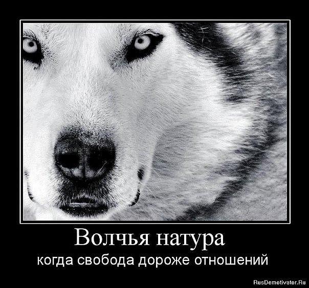 Иван Валынкин