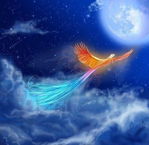 Картинки на магическую тематику - Страница 17 X_44017716