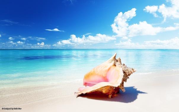 Поздравления с морем и солнцем 790