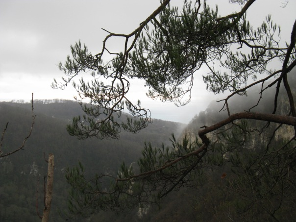 Вид с Орлиных скал