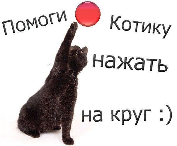 кеды на аву: