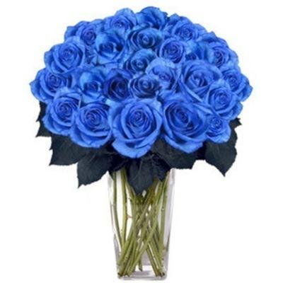 Синие розы на самом деле существуют.  Это скрещенные гены белой или...