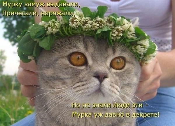 РЕЛАКСАЦИЯ))))) - Страница 5 3VHdwoz8vno