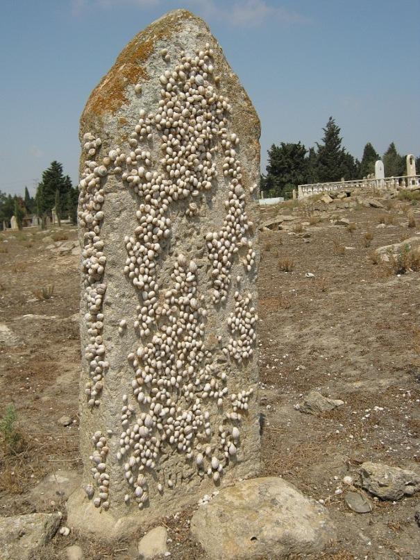 На окраине Баку - надгробный камень с застывшими улитками