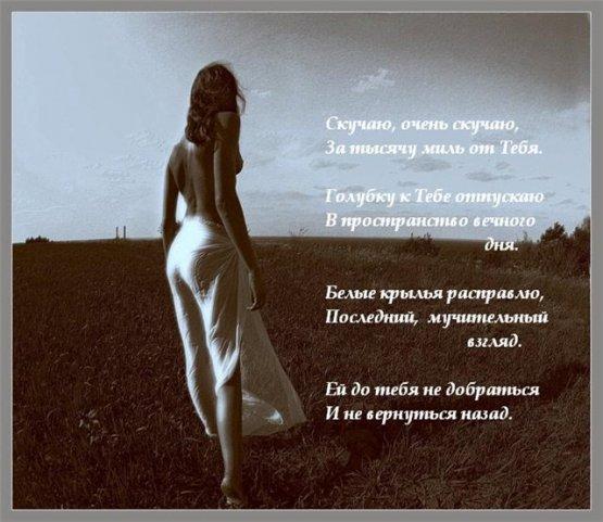 Мои любимые стихи. X_39bc8f3b