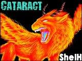 Dj.SheiH - Cataract