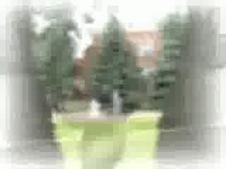 Выпускное видео (клип)