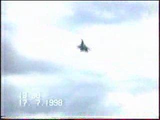 Су-33. Гюрза Подгузова.