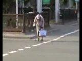 Бабушка переходит дорогу)))