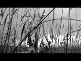 Нойз МС - Выдыхай