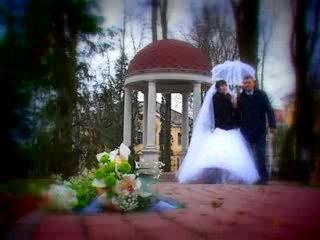 Свадебный клип Елена и Денис