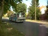Ikarus 280 in Pecs2