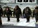 Вот так хачики танцуют в клубе!