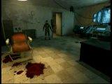 Half-Life 2  медисон