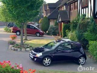 Форд Ка и кошка