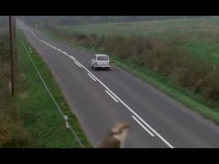 Коля (чешский фильм 1996)