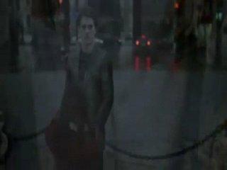 То, что видели мои глаза (Тайна Антуана Ватто) (2007)