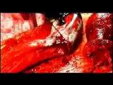 Bestial Devastation - Splatter Mania