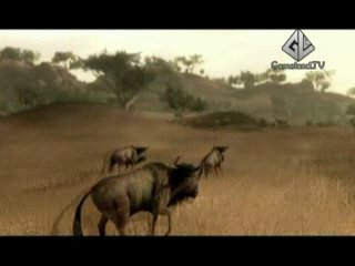 Gameland TV ОтжЫг Far Cry 2