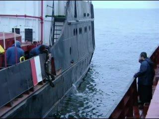 Столкновение судов Берил и Санта Виктория в Азовском море. Ноябрь 2009 г.