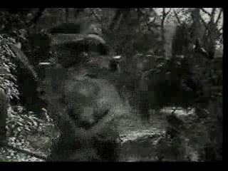 Тарзан тигр 1929 серия 10