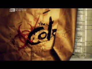 Колония (The Colony). Сезон 1. Эпизод 4. Безопасность