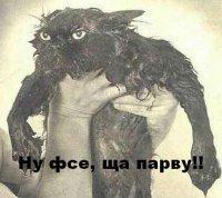 Нина Альтшуллер, 19 ноября 1981, Казань, id8443731