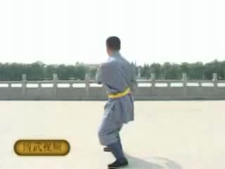 少林禅圆拳 - Чань Юань Гун