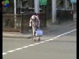 прикол.. Бабушка переходит дорогу!