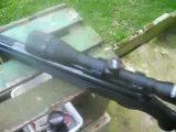 AIR Rifle DIANA 31 panter