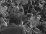 Paul Butterfield Blues Band With Mike Bloomfield